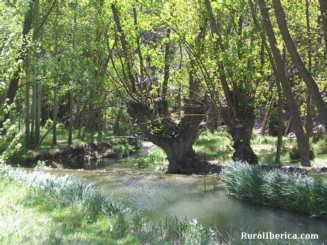 Rio Royuela. Royuela, Teruel - Royuela, Teruel, Aragón