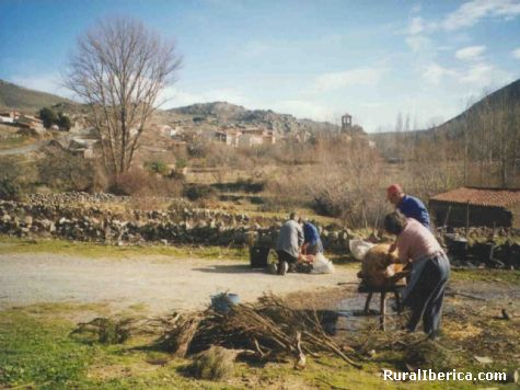 La matanza (Riofr�o) - Riofr�o, �vila, Castilla y Le�n