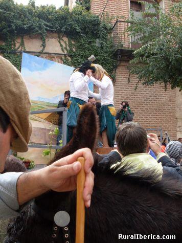 Fiesta de la Vendimia  - Rueda, Valladolid, Castilla y León