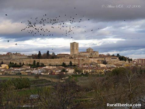Catedral de Zamora. Zamora, Castilla y León - Zamora, Zamora, Castilla y León