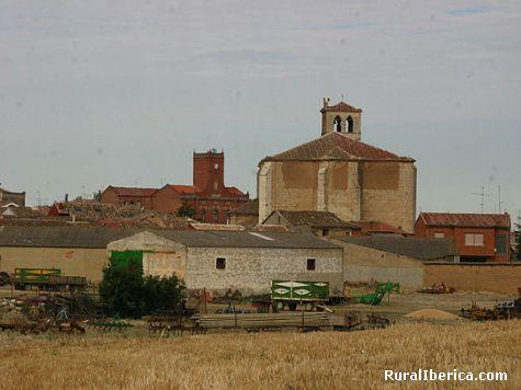 Panorámica. Becerril de Campos, Palencia - Becerril de Campos, Palencia, Castilla y León