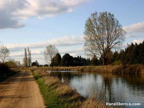 Canal de Castilla. Palencia, Castilla y León - Palencia, Palencia, Castilla y León