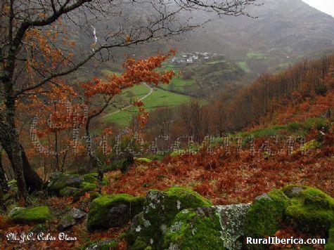 La Belleza del Otoño en Edrada- Vilariño de Conso - Edrada-Vilariño de Conso, Orense, Galicia