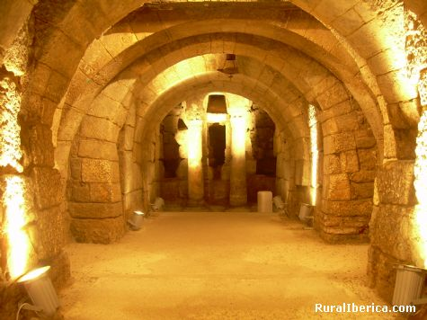 Cripta visigoda, Catedral de Palencia - Palencia, Palencia, Castilla y León