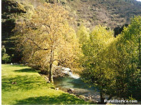 Alrededores del la Casa Rural de Ferreiria de Rugando-Vilarmiel-Quiroga-Lugo - Quiroga, Lugo, Galicia