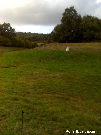Espantapajaros para el jabalí en un prado de A Veiga - A Veiga-Ourense, Orense, Galicia