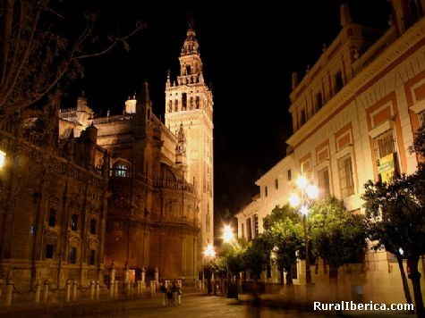 La Catedral. Sevilla, Andalucía - Sevilla, Sevilla, Andalucía
