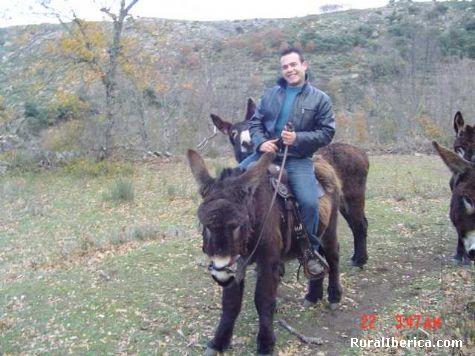 Excursiones en burro por Las Arribes del Duero. Mieza, Salamanca - Mieza, Salamanca, Castilla y León