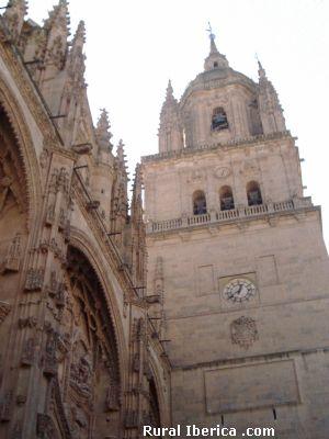 Fachada lateral de la Catedral de Salamanca - Salamanca, Salamanca, Castilla y León