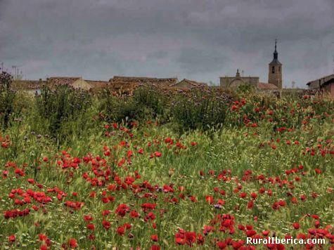 Villarramiel. Villarramiel, Palencia - Villarramiel, Palencia, Castilla y León