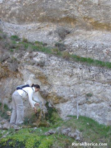 Fuente del caracol. Villarroya de los Pinares, Teruel - Villarroya de los Pinares, Teruel, Arag�n
